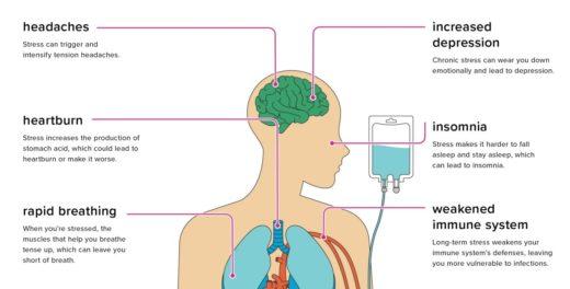 Stress Effects Body Health