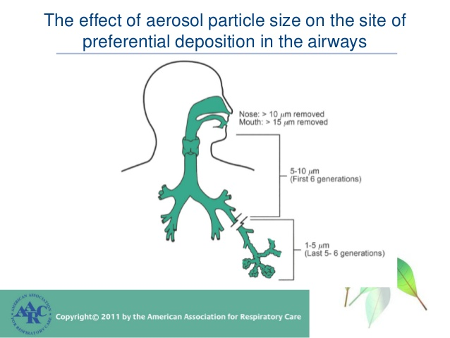 IAQ Indoor Air Quality Particle Size Penetration Respiratory System