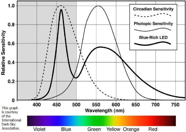 Graph Showing Circadian Sensitivity vs. LED Light Wavelength