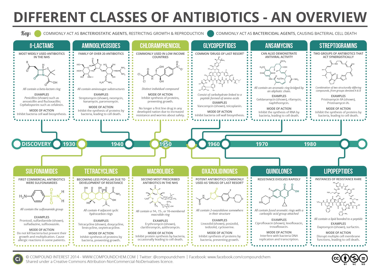 Major Classes of Antibiotics against Bacteria Chart